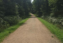 Typical Trail