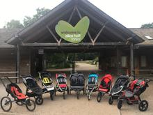 Alice Holt Buggy Line Up