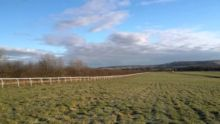 Langton Wolds Gallops2